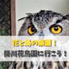 掛川花鳥園に日帰りで行った件